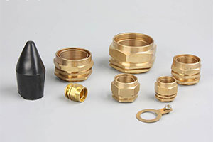 BW Cable Gland Manufacturer